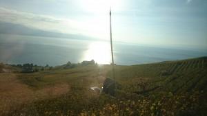 geneve rive gauche ,vue du lac leman